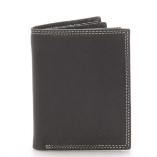 Pánská kožená peněženka černá - Delami Tui černá