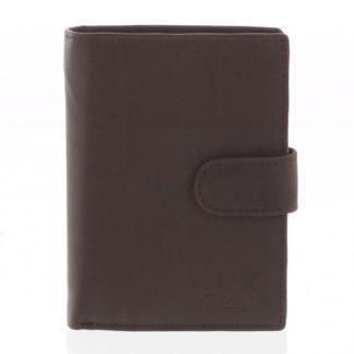Pánská kožená hnědá peněženka - Delami 8703 hnědá