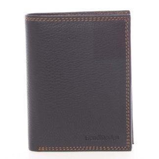 Luxusní pánská kožená černá volná peněženka - SendiDesign Rodion černá