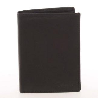 Pánská kožená černá peněženka - Delami Therron černá