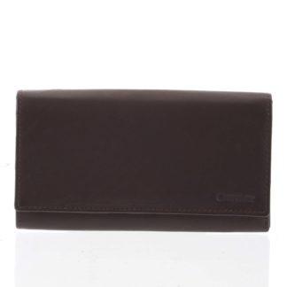 Dámská klasická hnědá kožená peněženka - Diviley Uniberso hnědá