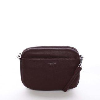 Malá dámská crossbody kabelka tmavě fialová - David Jones Berivan  fialová