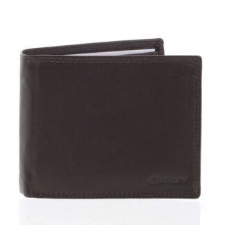 Praktická pánská volná hnědá peněženka - Diviley Unibertsoa hnědá