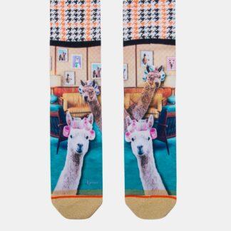 Béžové dámské ponožky XPOOOS